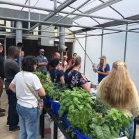 IFAS Horticulture Workshop